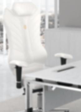 Premium ergonomski stoli - Stoli Pivk